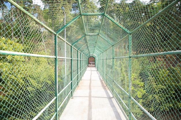 Via ponte per i turisti circondato da una griglia verde. ponte o percorso in calcestruzzo di sicurezza per l'attraversamento del fiume o del lago. concetto di turismo, avventura e vacanze estive