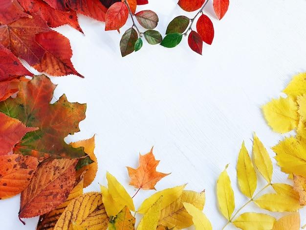 明るい秋、白い木製のテーブルに紅葉。