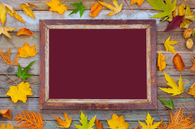 Bright autumn leaves and picture frame on a wooden background with maroon mock up