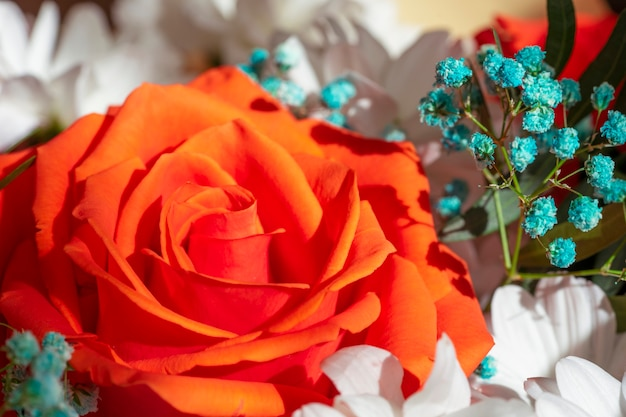 バラの赤、黄、ピンクの明るく美しい花束がクローズアップ