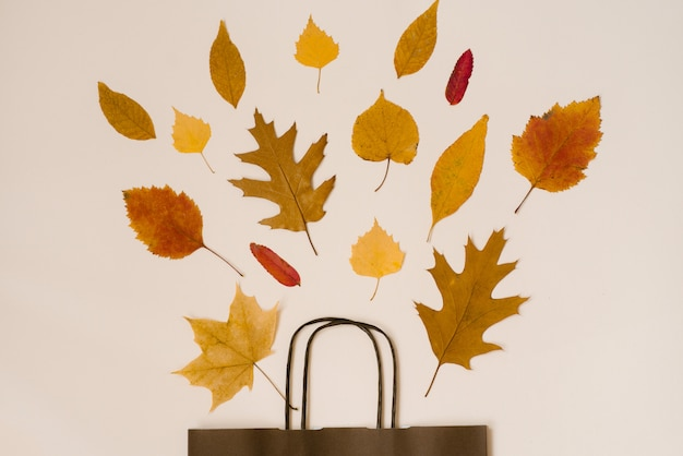 Bright bouquet of autumn fallen leaves in a gift brown paper bag