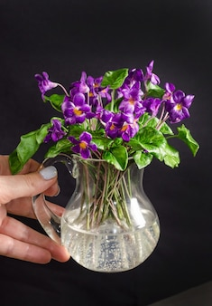 Яркий букет фиолетовых цветов в вазе