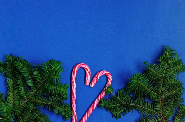 Bright christmas or new year blue background with fir branches