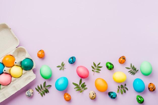 Яркая коллекция из ряда цветных яиц возле контейнера и листьев
