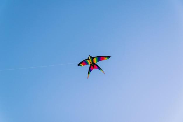 Яркий красочный воздушный змей в голубом ясном небе
