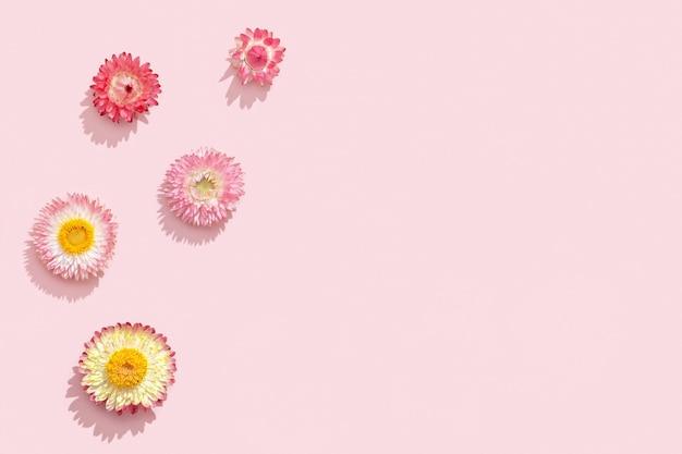 柔らかいピンクの自然な花の背景に明るいドライフラワー小さな花