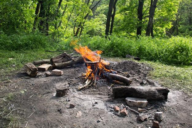 봄 숲에서 밝은 불 모닥불.