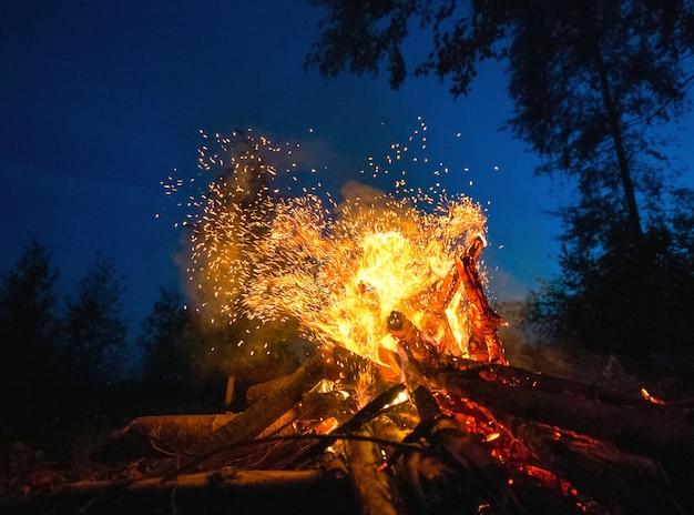 暗い夜の森の茂みの中で明るい火。