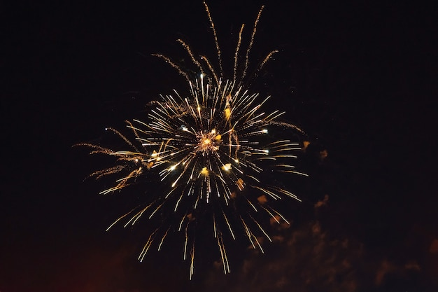 Bright fireworks in the night sky