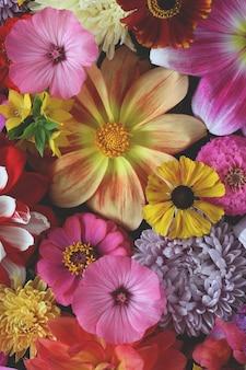明るい花の背景、上面図。さまざまな庭の花、自然の背景。