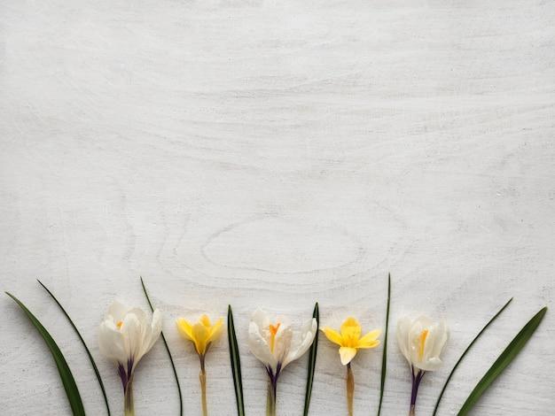 밝은 꽃과 비문 장소. 클로즈업, 사람, 질감. 가족, 친척, 친구 및 동료를 축하합니다