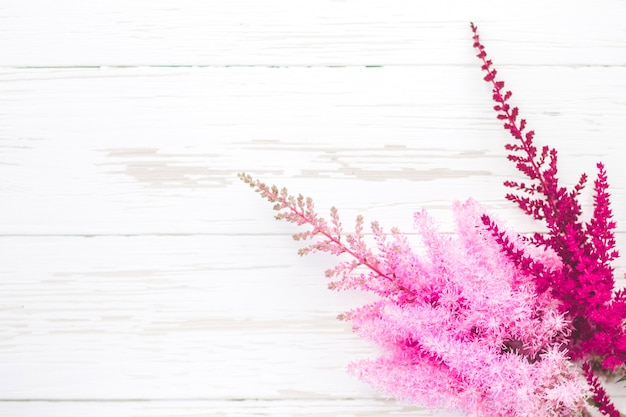 Bright fresh red and pink flowers on a white wooden background