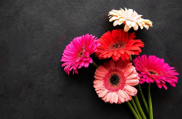 검은 콘크리트 바탕에 밝은 gerbera 꽃. 꽃의 프레임, 평면도