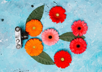 Bright gerbera flowers with camera on table