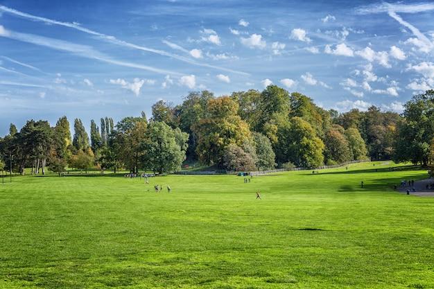 晴れた日に青い空を背景に明るい緑のフィールド。休んでいる人。