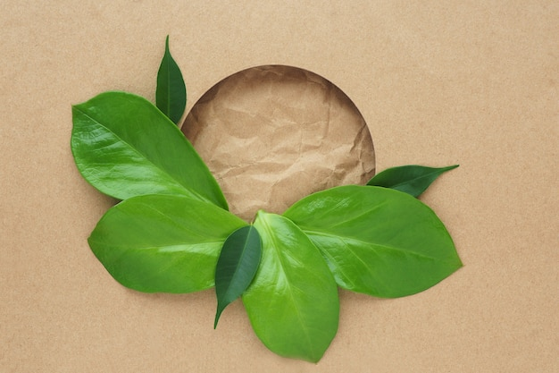 Ярко-зеленые листья разных размеров на крафт-бумаге. круглое отверстие и скомканная бумага ремесла на заднем плане. пространство для текста.
