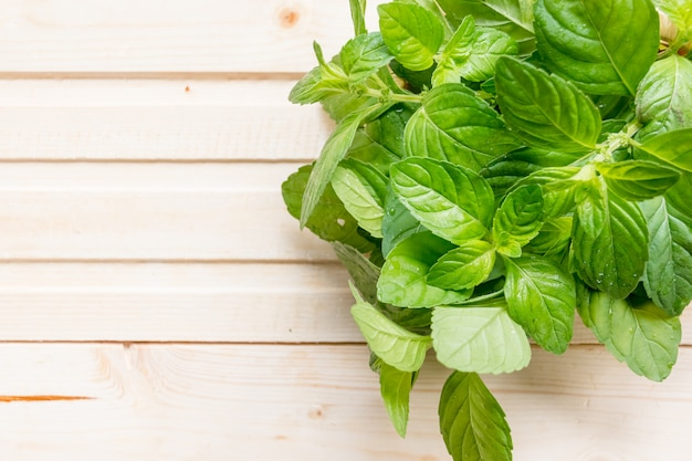 Bright green mint leaves on a wooden background.organic fresh bunch of organic mint.copy space