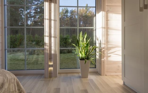 Светлый интерьер комнаты в деревянном доме с большим окном, выходящим на осенний двор. золотой осенний пейзаж в белом окне. дом и сад, концепция падения. растение sansevieria trifasciata