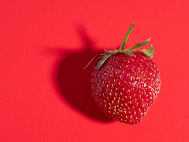赤の背景に明るくジューシーな熟したイチゴ。