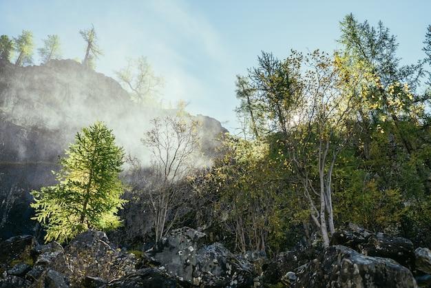 金色の日光の下で秋の木々と岩山の壁の背景に滝から滴の水雲と明るい風景。金の日差しの中で黄色の木の上の岩の近くの美しい水雲