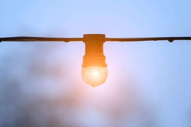 전선에 밝은 전구가 푸른 하늘에 매달려 있습니다. 고품질 사진