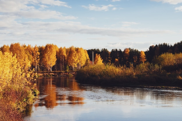 Bright mottled yellow and red trees on the river bank against a blue sky background