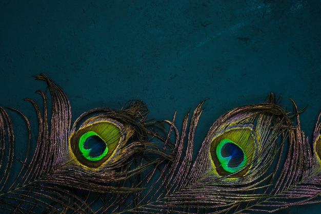 Bright multicolored peacock feathers on dark . symbol of krishna in hinduism religion