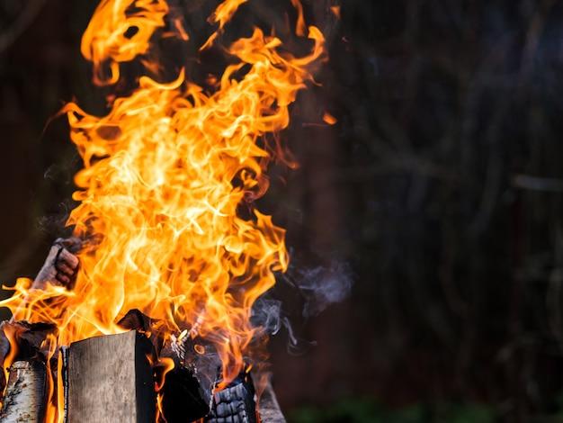 バーチ材の燃焼による明るいオレンジ色の火