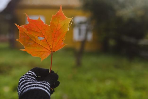 Ярко-оранжевый кленовый лист в руке в варежке осеннее настроение