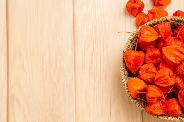 Ярко-оранжевые ягоды физалиса на ярком древесном фоне