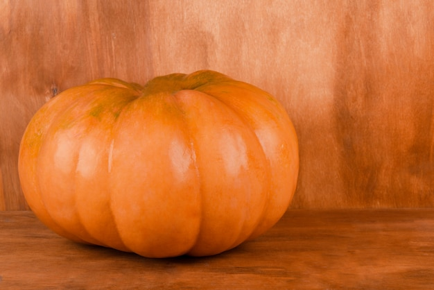 Bright orange pumpkin