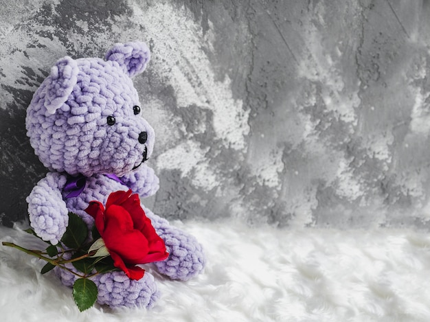 Bright plush toy and blooming red rose