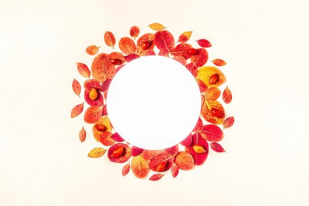 白い表面に明るい赤の葉