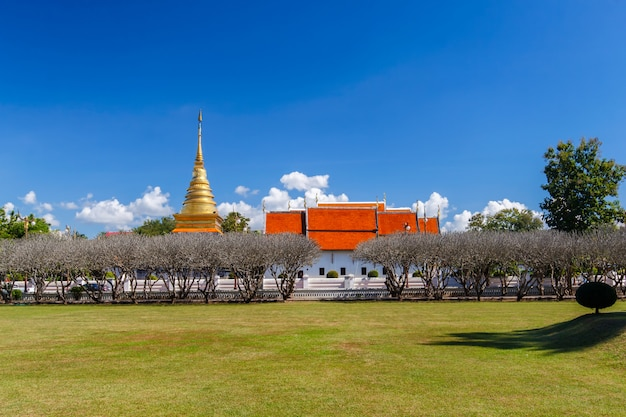 Bright sky with grass field in nan museum in front of golden pagoda in wat phra that chang kham