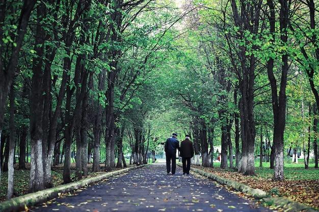 숲에서 새벽에 밝은 봄 녹색. 자연은 이른 봄에 생명을 얻습니다.