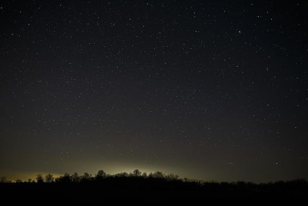 숲의 밤하늘에 밝은 별. 긴 노출로 풍경.