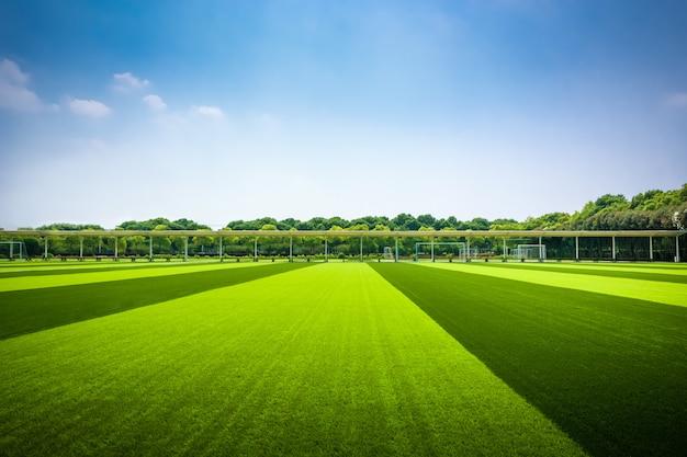 Яркий солнечный день в парке. солнечные лучи освещают зеленую траву и деревья.