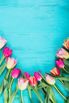 Bright tulips on blue table