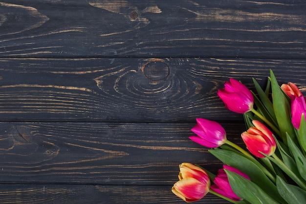 Bright tulips in corner