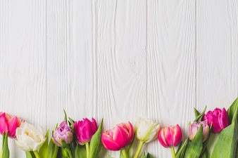 Bright tulips on wooden background