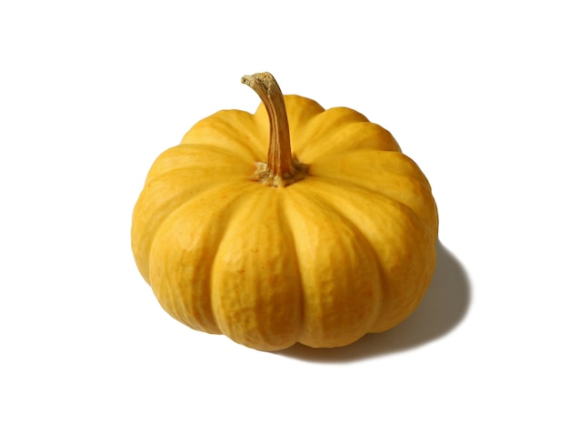 Bright yellow ripe pumpkin with stem isolated