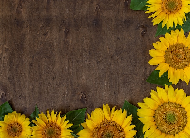 Bright yellow sunflowers on a dark wooden background