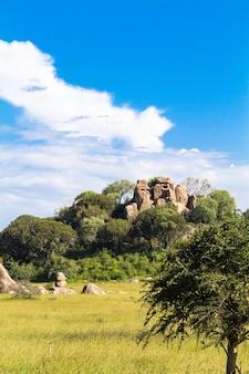 真っ青な空と雲。タンザニア、セレンゲティのサバンナ