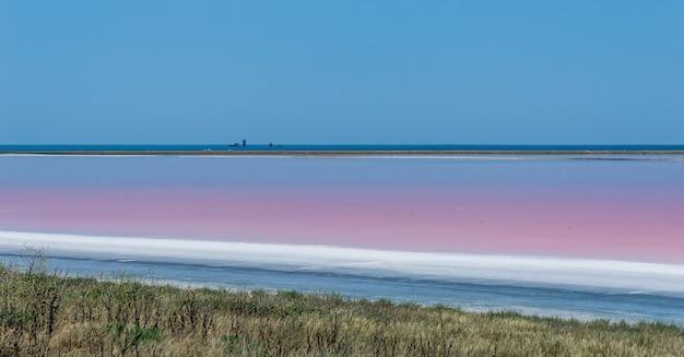 Brine and salt of a pink lake, colored by microalgae dunaliella salina