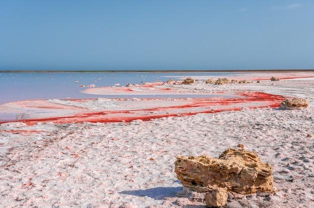 Brine and salt of a pink lake koyash colored by microalgae dunaliella salina