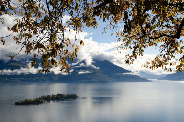 Brissago islands and branches on the alpine lake maggiore and mountains in ticino, switzerland