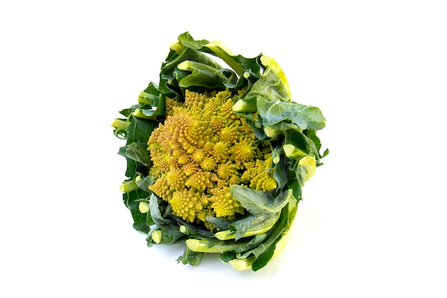 Broccoli romanesco isolated on white background
