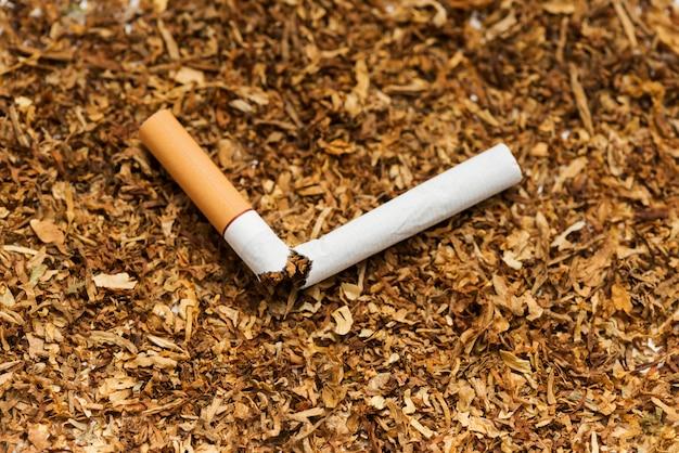 Broken cigarette against tobacco