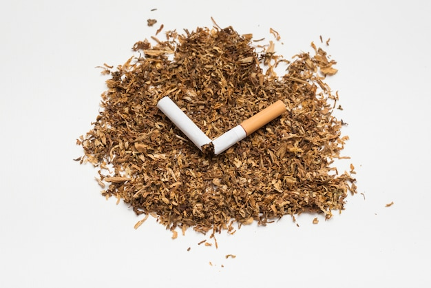 Broken cigarette on tobacco against white background