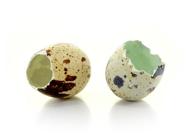 Broken eggshell on white wall